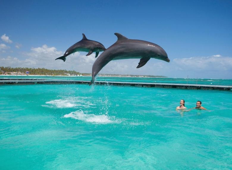 Доминикана – лучшее место для отдыха