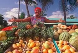 Что выбрать: Куба или Доминикана?