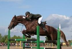 Анапа приглашает всех любителей конного спорта